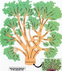 IE-tree